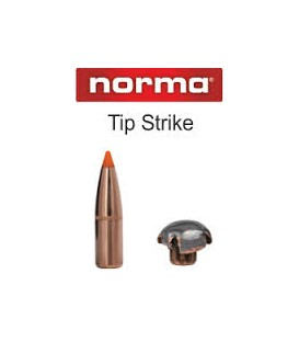 NORMA 300 TIPSTRIKE 170G