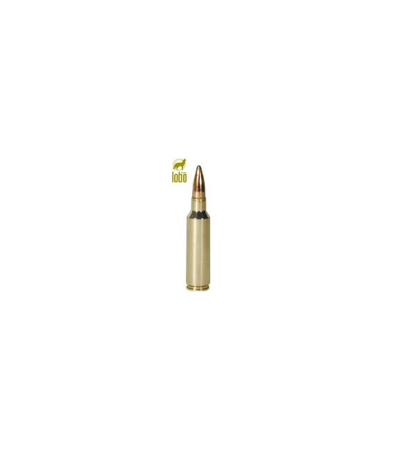 WINCHESTER 300 WSM POWER POINT 180G