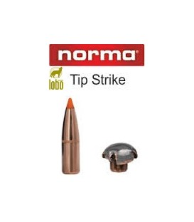 NORMA 300 TIPSTRIKE 170G