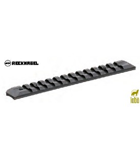 CARRIL RECKNAGEL PARA MERKEL SR1